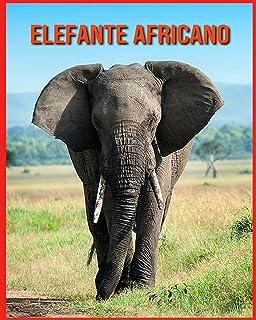 Elefante Africano: Foto stupende e fatti divertenti Libro sui Elefante Africano per bambini