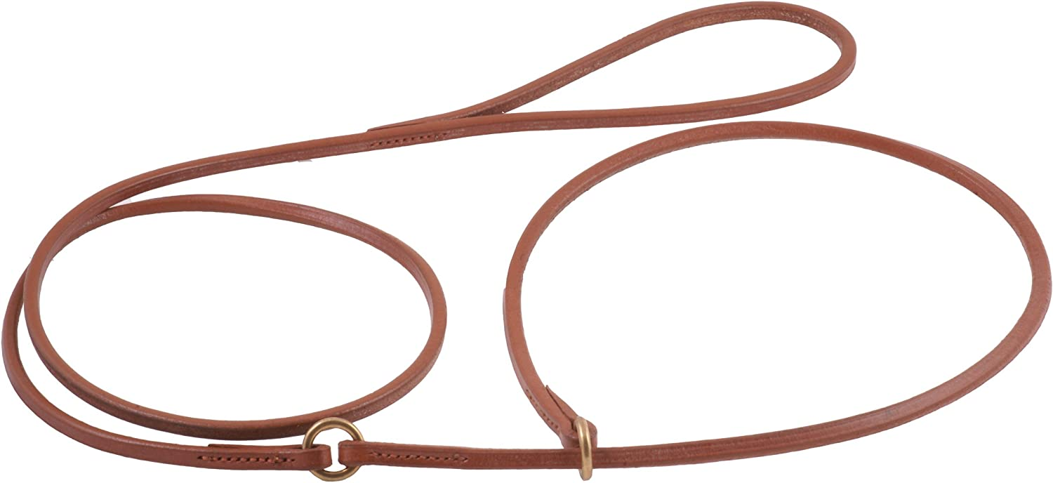Alvalley Flat Lead with Collar for Dogs 3 ft Lenght x 24  Collar