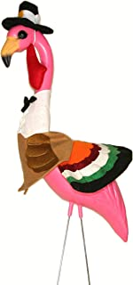 Pink Inc. TUR1 TurkeyMingo