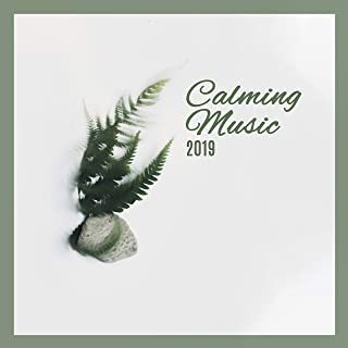 Calming Music 2019: Ambient Music Perfect for Calming Nerves, Aid for Anxiety, Bad Mood, Depression, Bad Thoughts Destroyer, Stress Relief