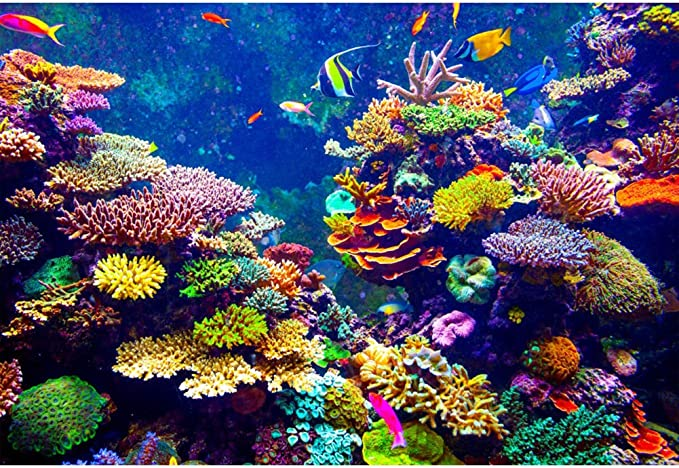 Leowefowa 10x8ft Cartoon Underwater World Backdrop Vinyl Colorful Ocean Lifes Corals Illustration Photography Background Aquarium Fish Tank Decor Baby 1st Bday Baby Shower Party Banner Wallpaper