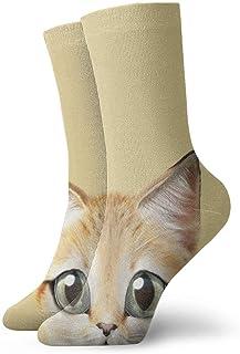 かわいいかわいい靴紐柄柄柄柄柄柄美柄美柄子猫
