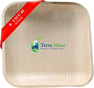 Terra Mirai Areca Palm Leaf Plates – Pack of 20, 6 Inch Square Plate - Ecofriendly Disposable Dinnerware - Biodegradable & Premium Quality Square Plates - Ideal for Party, Wedding, BBQ, Camping & More