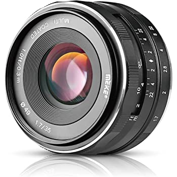 Meike 35mm F1.7 Large Aperture Manual Prime Fixed Lens APS-C for Sony E-Mount Digital Mirrorless Cameras NEX 3 3N 5 NEX 5T NEX 5R NEX 6 7 A6400 A5000 A5100 A6000 A6100 A6300 A6500 A3000