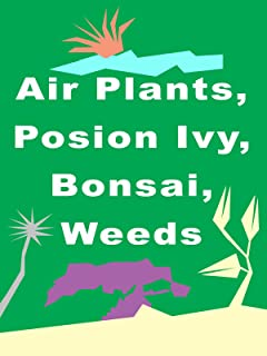 Air Plants, Poison Ivy, Bonsai, Weeds