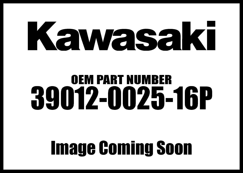 Kawasaki 2008-2011 Milwaukee Mall Teryx Case Camoufla Ne Max 51% OFF Storage 39012-0025-16P