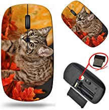 MSD Computer Wireless Mouse, Laptop USB Wireless Mouse, 2.4G Travel Mice, 1000 DPI for Notebook PC Laptop Computer MacBook...