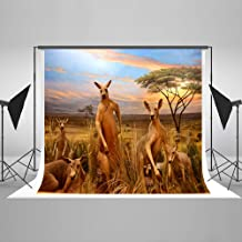 photo booth backdrop australia