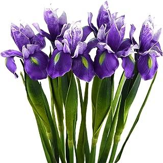Best peach iris flower Reviews