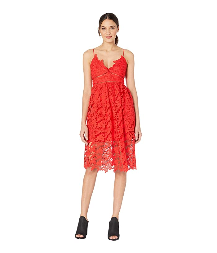 Bardot Sonya Lace Dress 6pm
