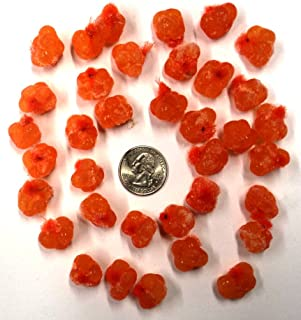 Catchmore Orange Spawn Sacs; 36 Sacs; Harvested/Processed in Michigan; Certified; #SS12VOR