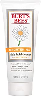 Burt's Bees Brightening Daily Facial Cleanser, 6 Ounces