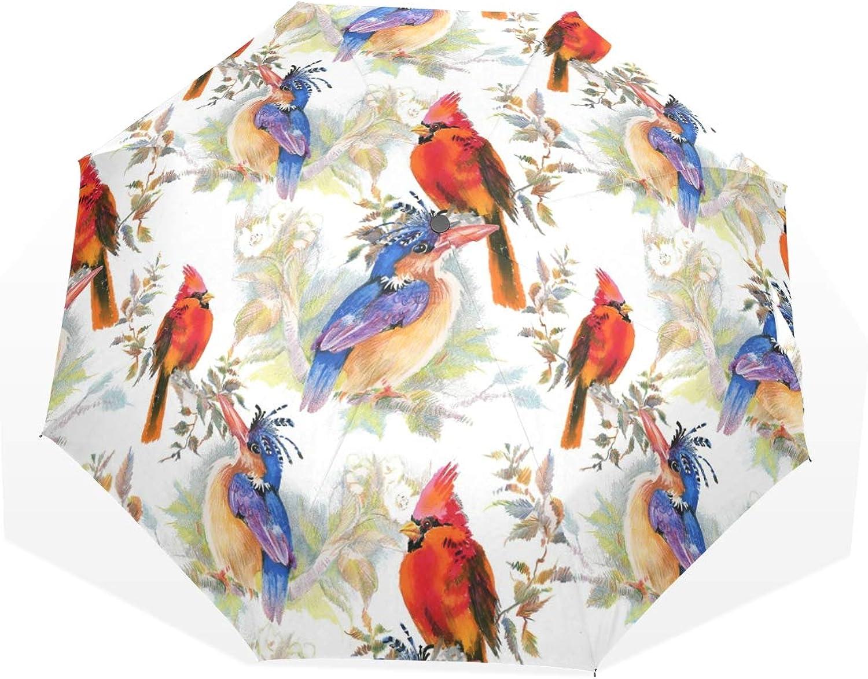 Anmarco Birds and Flowers Travel Umbrella Compact Folding Sun & Rain Predection Windproof Portable Umbrella for Kids Women Men