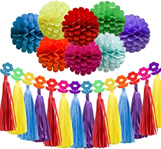 ADLKGG Rainbow Birthday Party Decorations, Bright Colorful Honeycomb Tissue Paper Pom Pom Flowers Balls, Paper Tassel Garland, Rainbow Paper Garland for Baby Shower Supplies