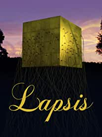 Sci-Fi Drama LAPSIS arrives on DVD and Digital May 11 from Film Movement