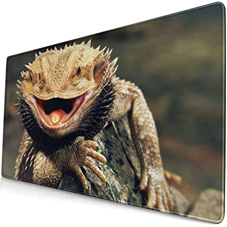 Bearded Dragon Lizards Gaming Mouse Pad Desk Mouse Mat Large Size 15.8x29.5 x0.12inches Computer Keyboard Mousepad for Gaming and Office Home