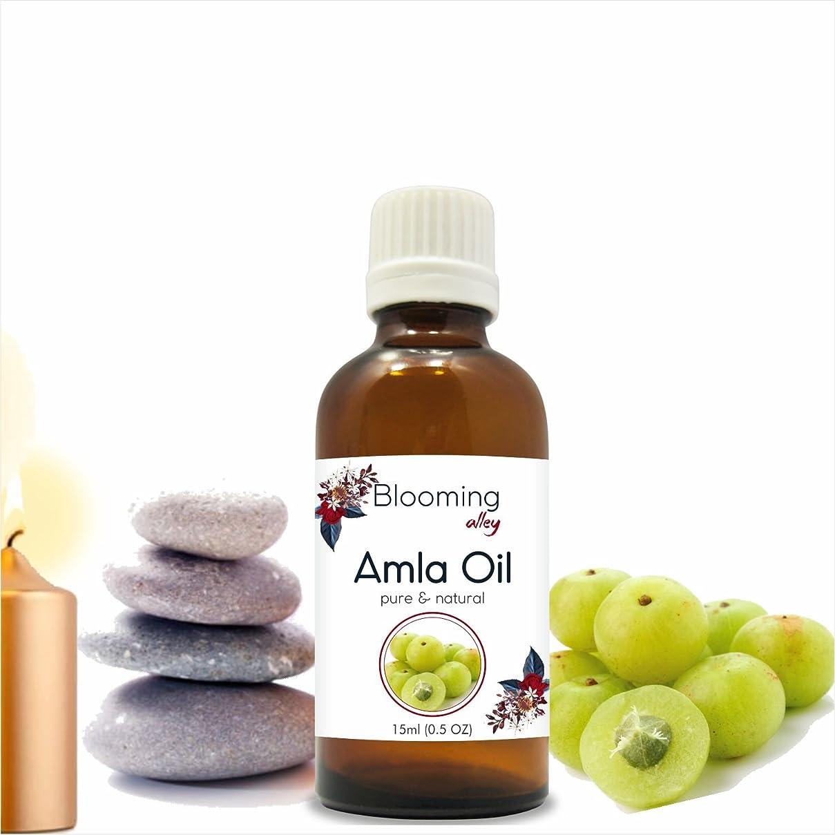 エンディング導出はねかけるAMLA Indian Gooseberry (Emblica officinalis) Infused Oil 15ML