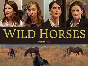 Best wild horse videos Reviews