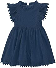 Best Niyage Toddler Girls Elegant Lace Pom Pom Flutter Sleeve Party Princess Dress Review