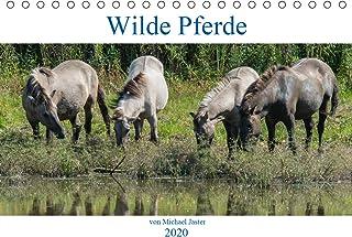 Wilde Pferde von Michael Jaster (Tischkalender 2020 DIN A5 quer): Wilde Pferde von Michael Jaster sind frei und ungezähmt....