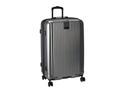 Kenneth Cole Reaction Rush Hour Collection Pet 28 Upright (Silver) Luggage