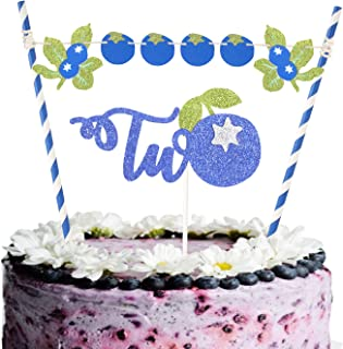 Set of Blueberry Two Cake Topper, Fruit Theme Cake Topper with Little blueberry Bunting For Baby Girls Boys 2nd Birthday P...