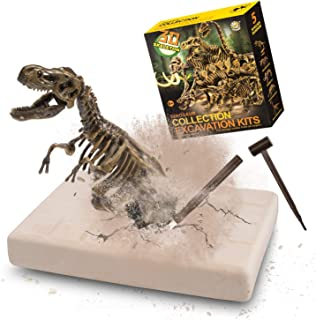 VIBIRIT Dig Up Dinosaurs T-Rex Skeleton Set,5PCs Dinosaur Toy Kit Model Toys Gift Educational Realistic Toys for Boys & Girls