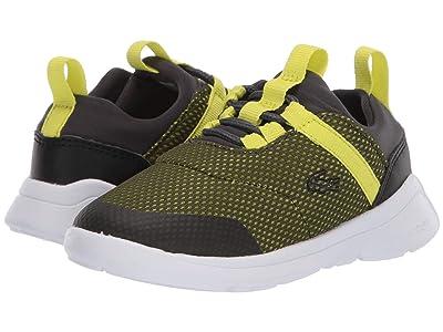 Lacoste Kids LT Dash 120 1 SUI (Toddler/Little Kid) (Dark Grey/Yellow) Kid