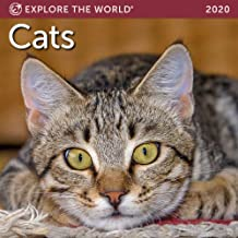 Cats Mini Wall Calendar 2020 Monthly January-December 7