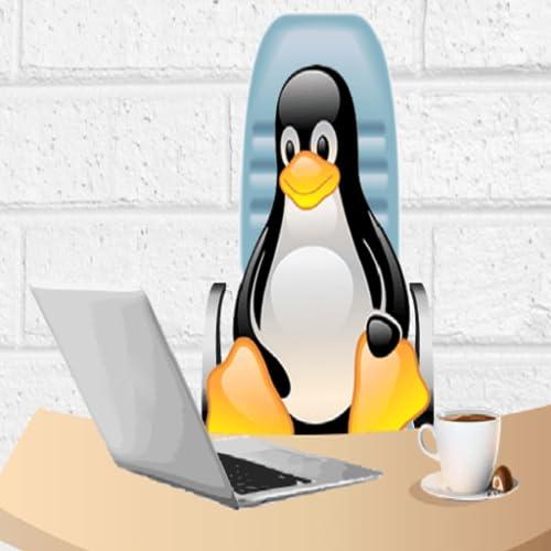 Linux shell script concepts