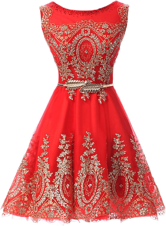 DressyMe Affordable Prom Party Dress Short Cocktail Dress Sash Applique ALine