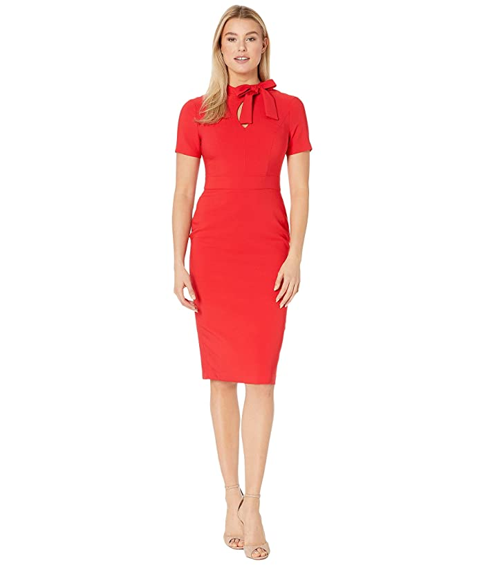 Maggy London  Dream Crepe Sheath with Neck Tie (Rose Trelis) Womens Dress