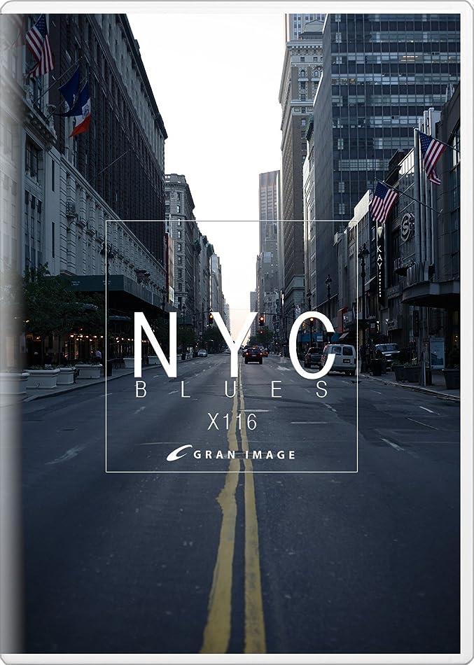 シェルターヒロイン抑制するグランイメージ X116 ニューヨークシティブルース(ロイヤリティフリー写真素材集)