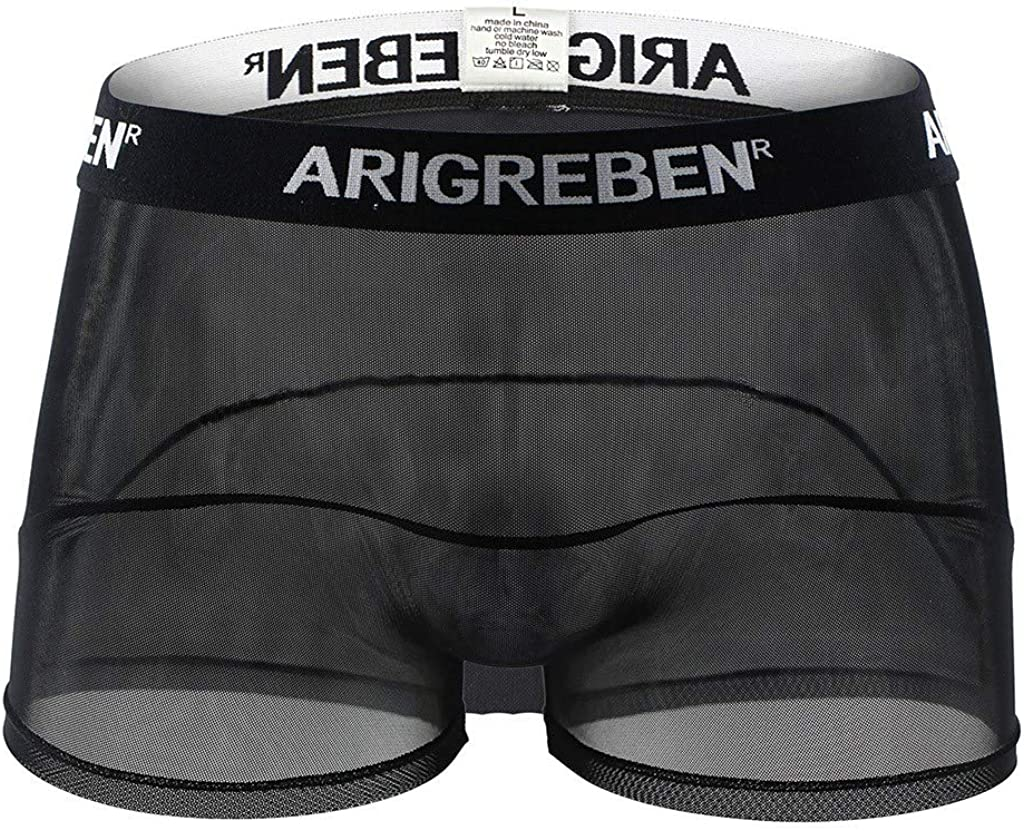GGGK Men's Sexy Breathable Mesh Big Boxer Briefs, Breathable See Thongs Underwear Though Shorts Bulge Pouch Underpants