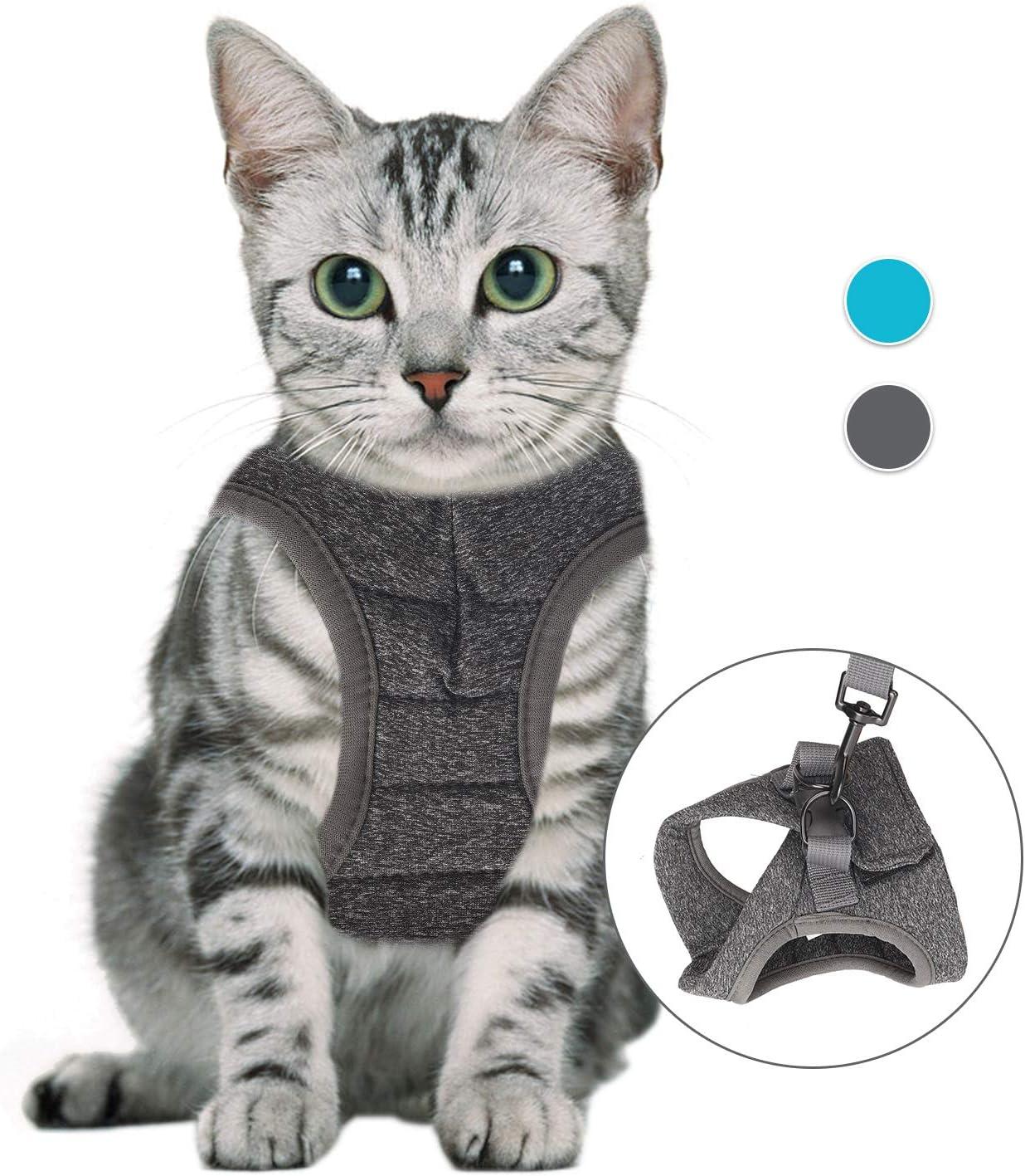imbracatura leggera per cuccioli di gatto set di cinture e cinture per camminare blu, S in materiale elastico e traspirante Pettorine per gatti regolabili per esterni