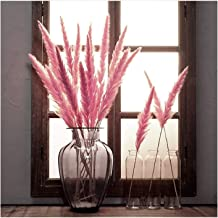 YZT 7Pcs/lot Bulrush Natural Dried Small Pampas Grass Phragmites Artificial Plants Wedding Flower Bunch for Home Decor Flo...