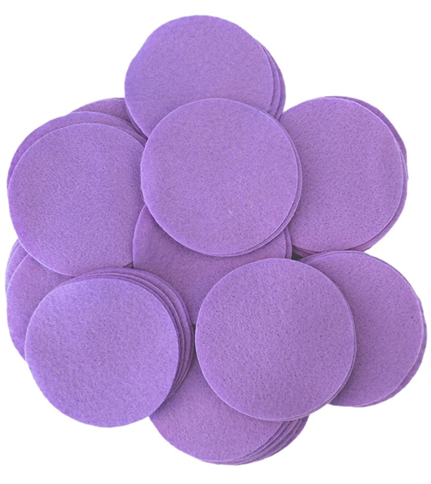 Playfully Ever After 2 Inch Purple 44pc Felt Circles