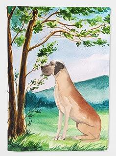 Caroline's Treasures CK2011CHF Tree Dane Flag Canvas House Size, Multicolor