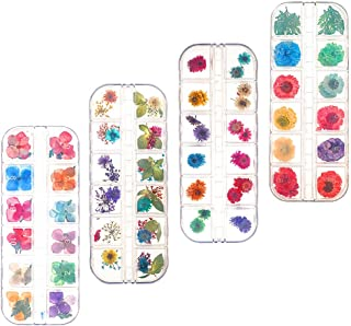 Xinzistar 138 Pieces Nail Art Real Dried Flower Set Mini Real Natural Flowers Nail Art Supplies 3D Applique Nail Decoratio...