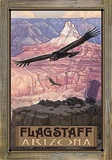 Northwest Art Mall Flagstaff Arizona Condor Metal Print on Reclaimed Barn Wood by Paul A. Lanquist (12