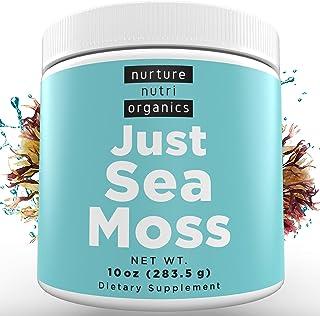 Nurture Nutri Just Sea Moss Powder (10oz / 283g) | Sea Moss Organic | Irish Sea Moss Organic Raw | Seamoss Raw Organic | S...