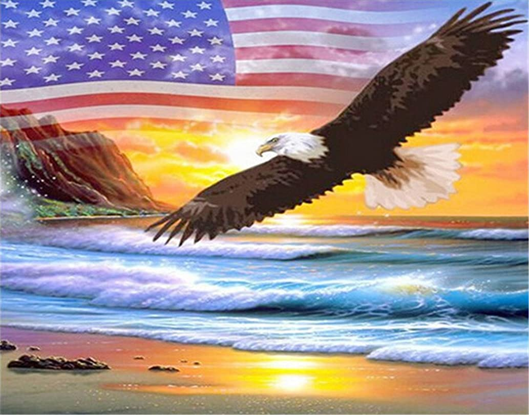 Kuwoolf 5D DIY Diamond Painting Crystal Eagle American Flag Cross Stitch Embroidery Animals Full Square Drill Diamond Pattern Home Decoration -D