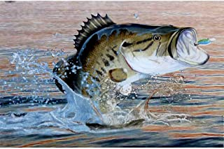 Hunting 'Gone Fishing' Invitations w/ Envelopes (8ct)
