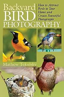 Best paper bird photography Reviews