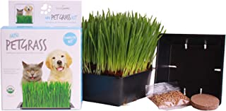 Handy Pantry Organic Cat Grass Kit