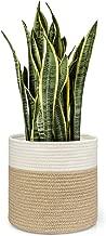 Best jute plant basket Reviews