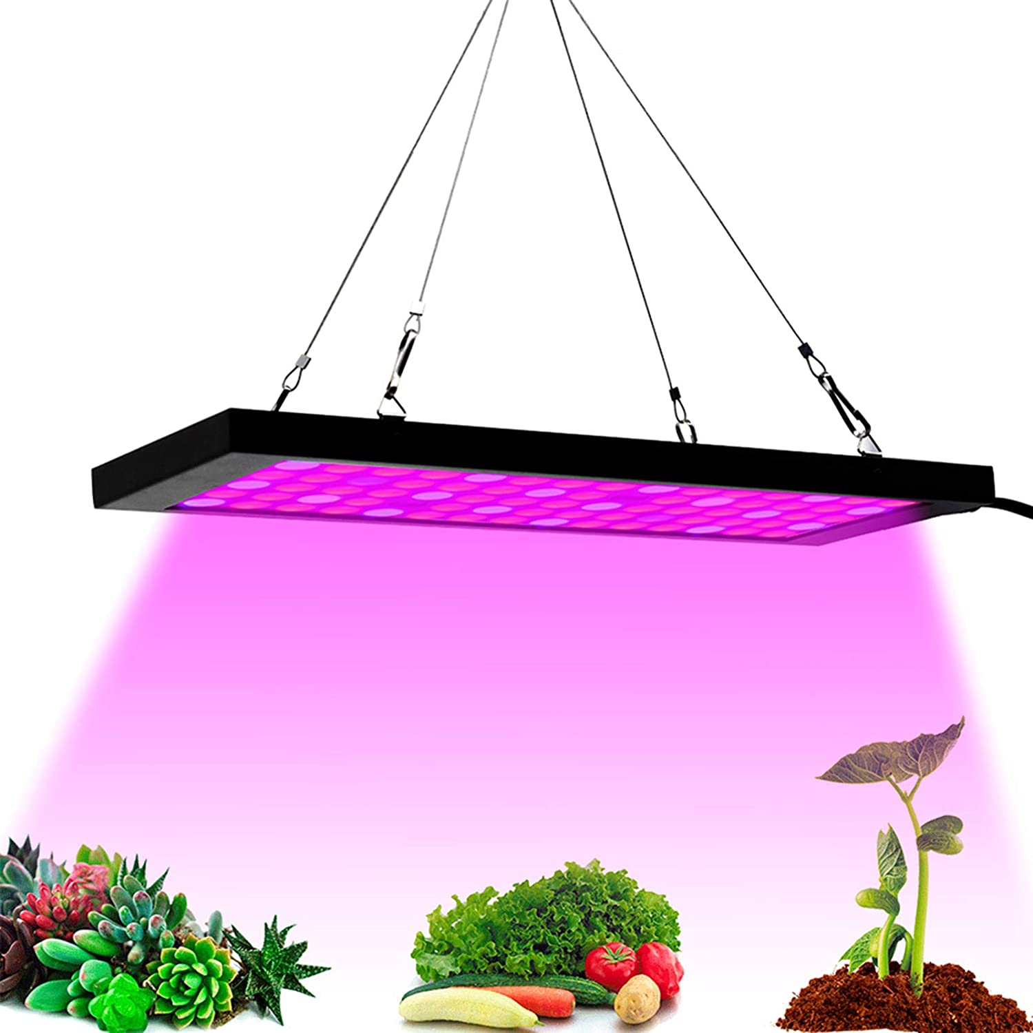 LED Grow Lights Full Max 82% OFF Spectrum 100W for Columbus Mall Indoor Plants Growing 75