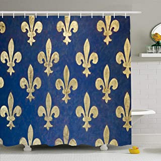 Ahawoso Shower Curtain Set with Hooks 66x72 Fleurdelis Classic Pattern Insignia Florence Painted De On Museums Signs Wall Palazzo is Interiors Waterproof Polyester Fabric Bath Decor for Bathroom
