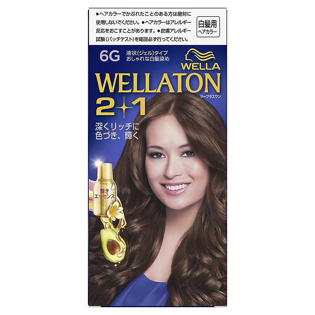 トレードカメラ加速度ウエラトーン2+1 白髪染め 液状タイプ 6G [医薬部外品] ×6個