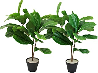 WPYST Set of 2 Artificial Fiddle Leaf Fig Natural Textured Potted Plant 25